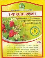 Распознаем заболевания томатов